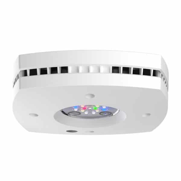 Ai PRIME 16HD Freshwater wit